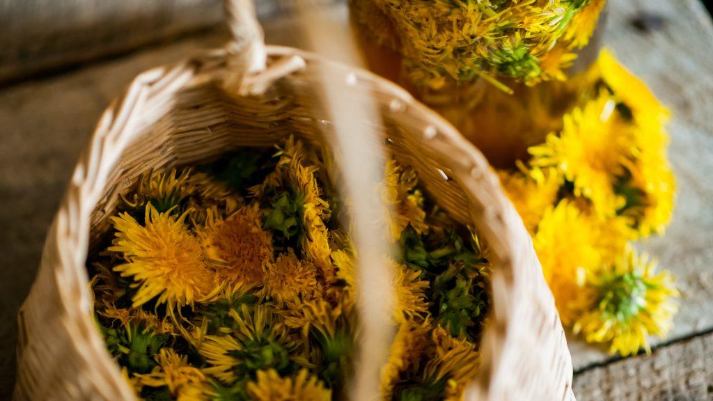 dandelion basket