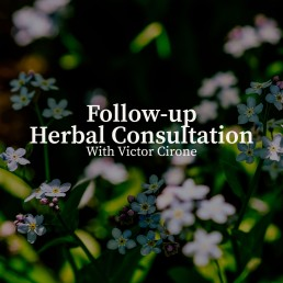 followup herbal consultation image