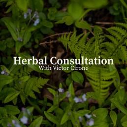 herbal consultation image