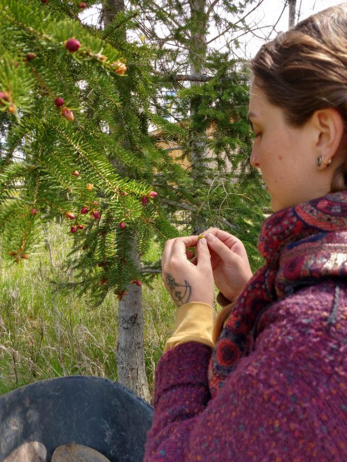 dayna with spruce