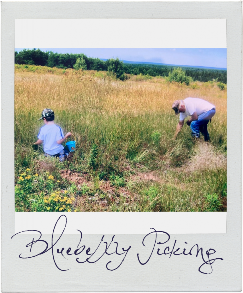 Blueberry Picking in 2007